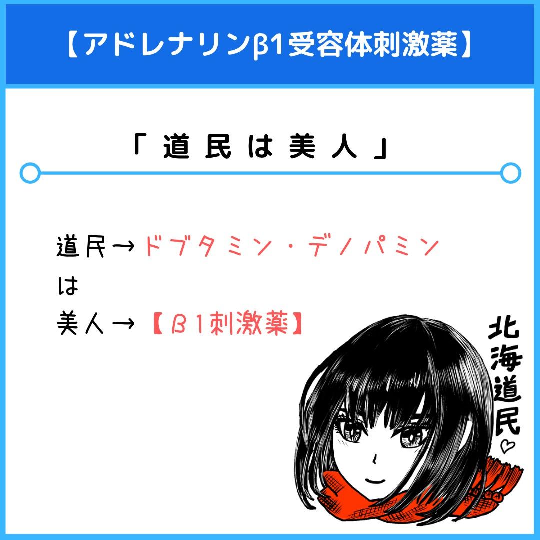 f:id:yakugakun:20210117214742j:plain