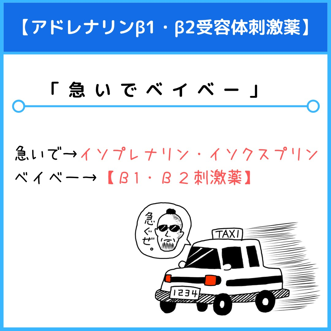 f:id:yakugakun:20210117222447j:plain