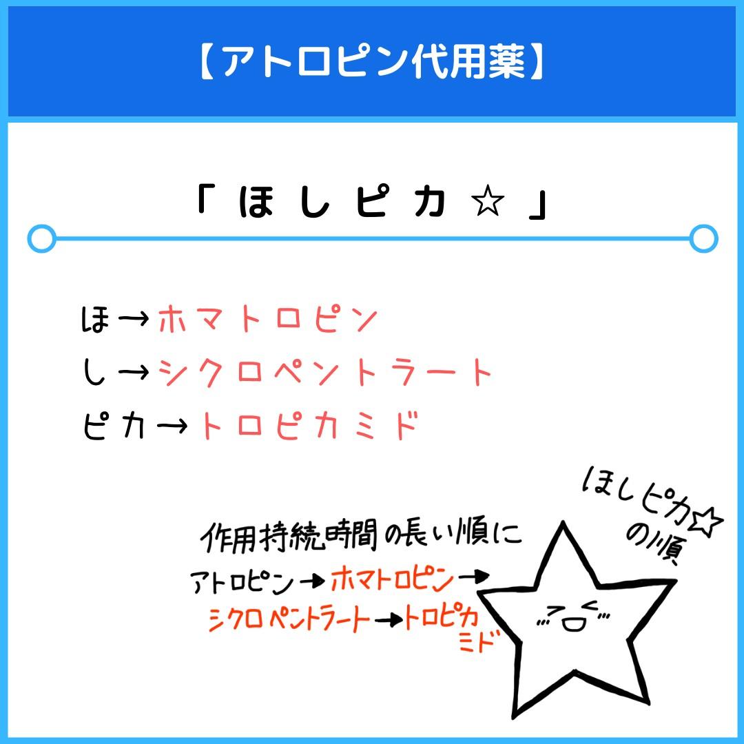 f:id:yakugakun:20210117224721j:plain