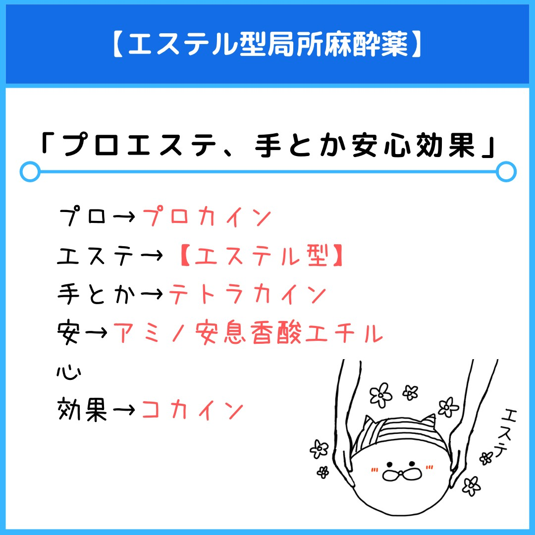 f:id:yakugakun:20210412142446j:plain