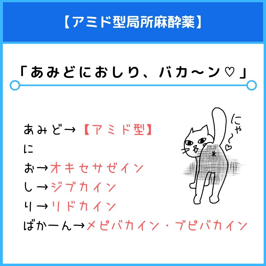 f:id:yakugakun:20210412144041j:plain