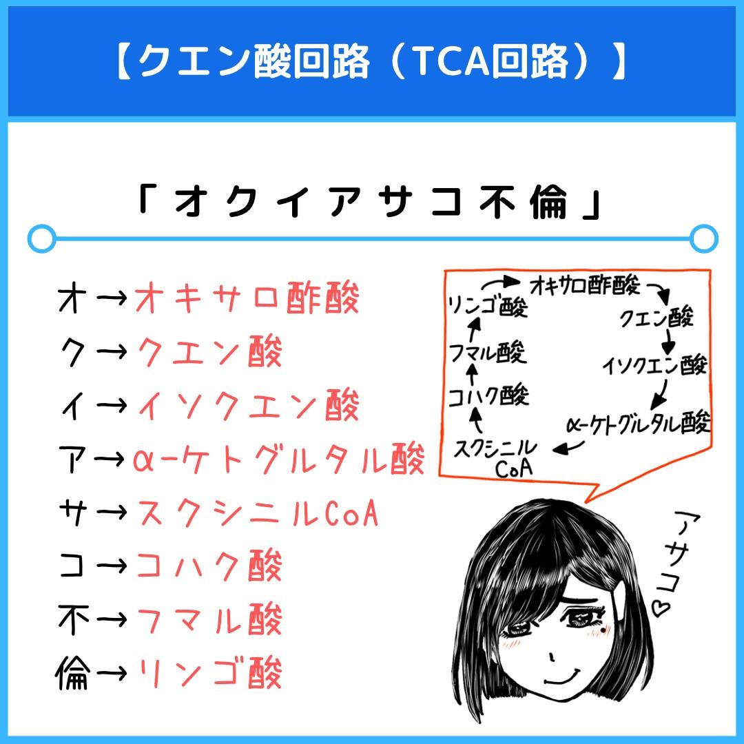 f:id:yakugakun:20210412153222j:plain