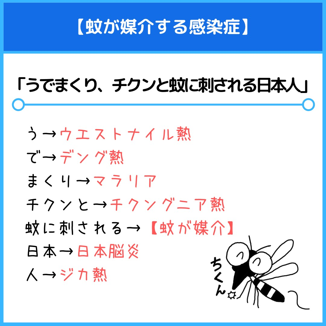 f:id:yakugakun:20210412155030j:plain