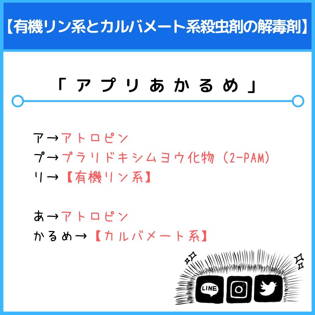 f:id:yakugakun:20210415225253j:plain