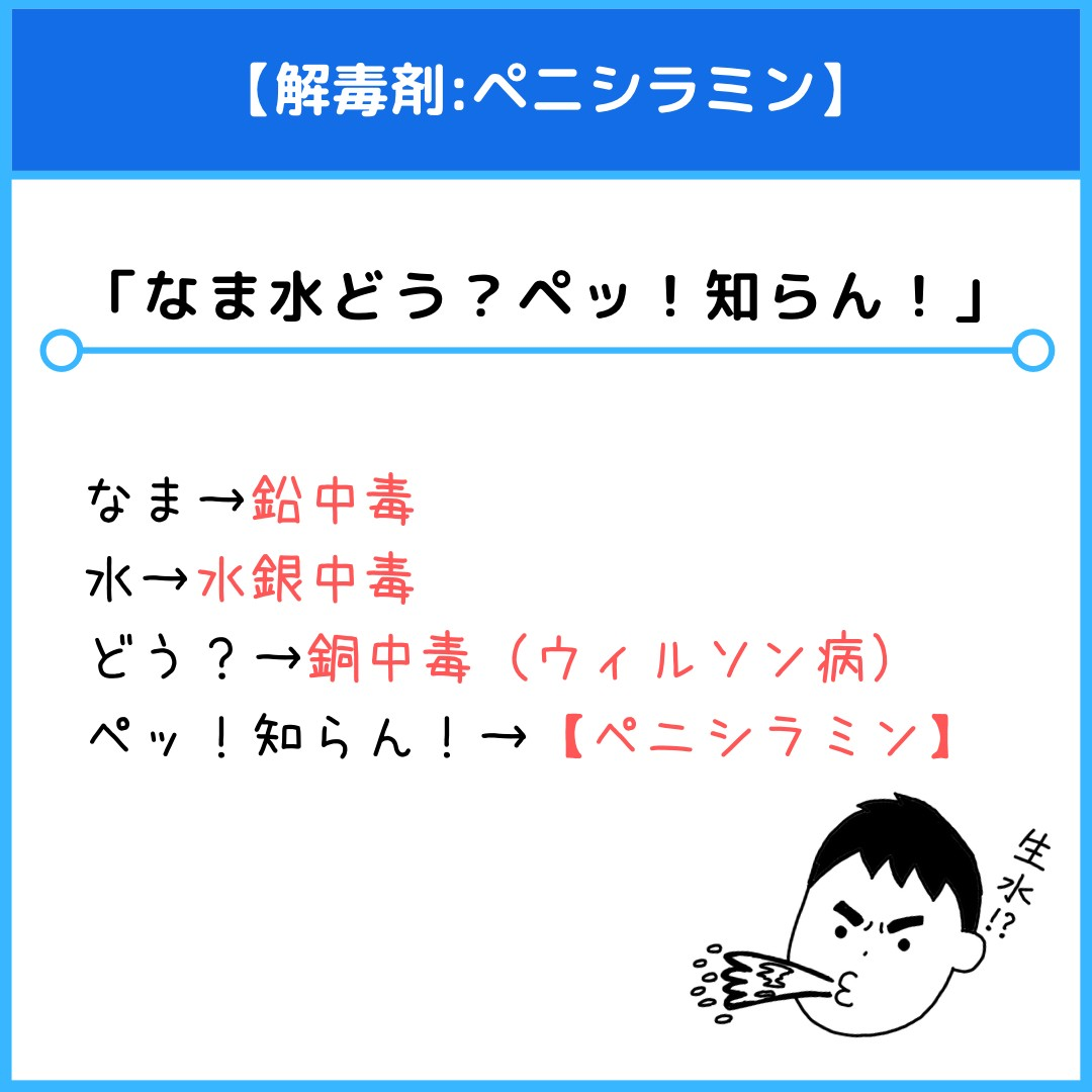 f:id:yakugakun:20210415233619j:plain