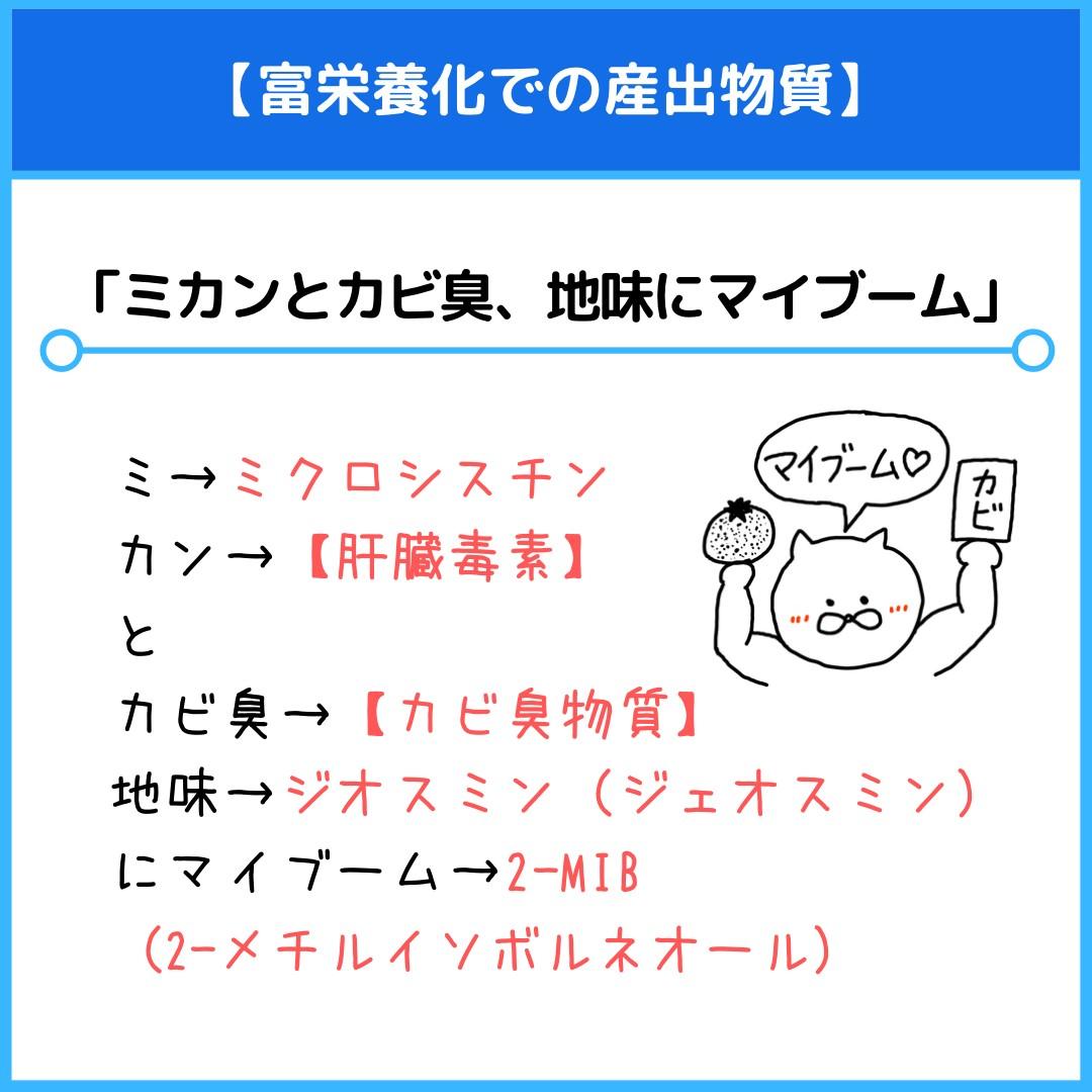 f:id:yakugakun:20210528002547j:plain