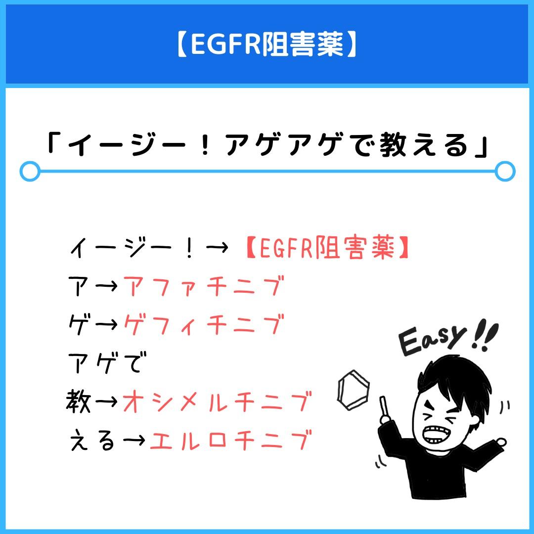 f:id:yakugakun:20210530180600j:plain