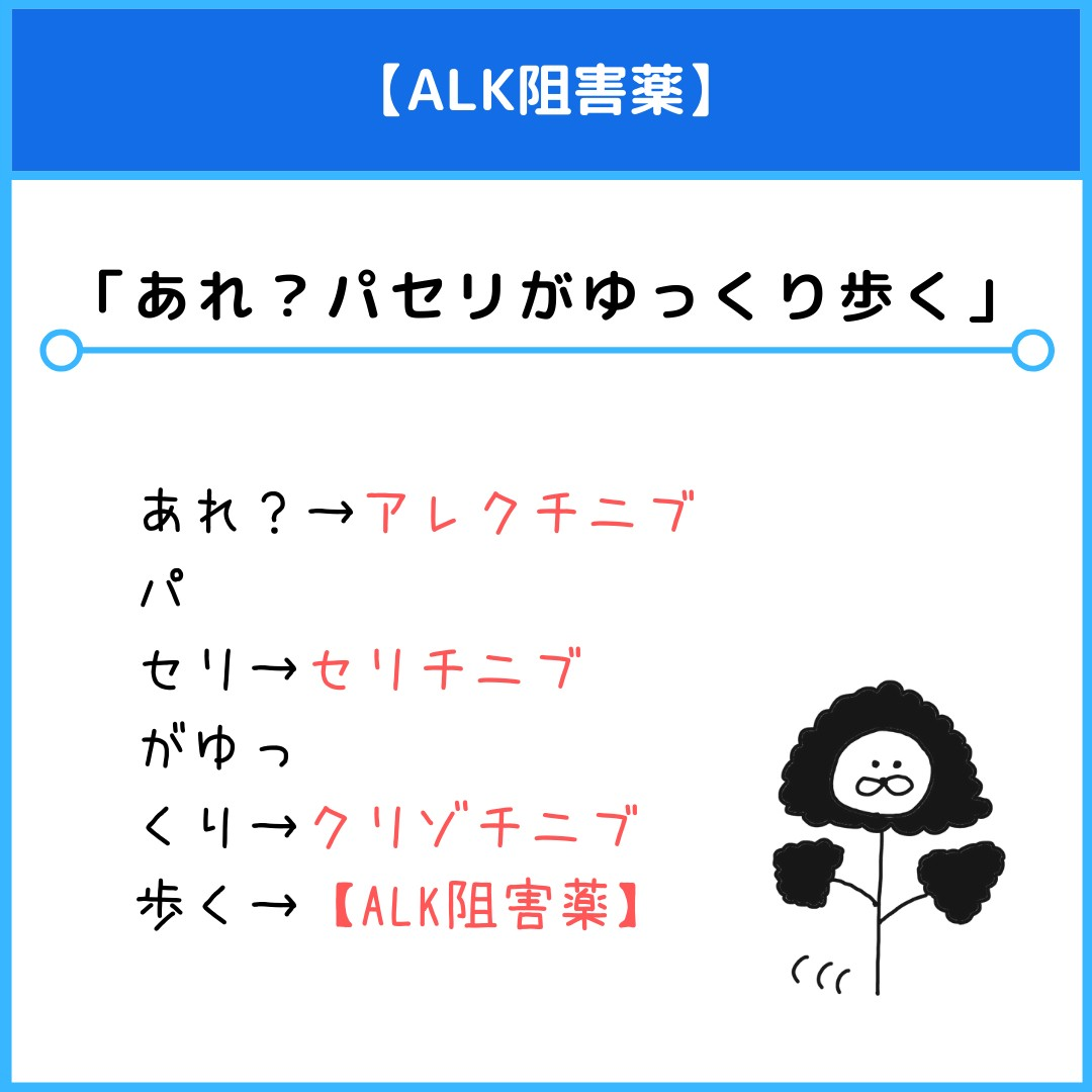 f:id:yakugakun:20210530182003j:plain