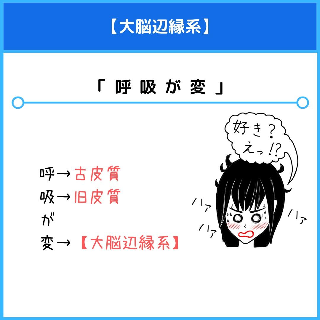f:id:yakugakun:20210804162130j:plain