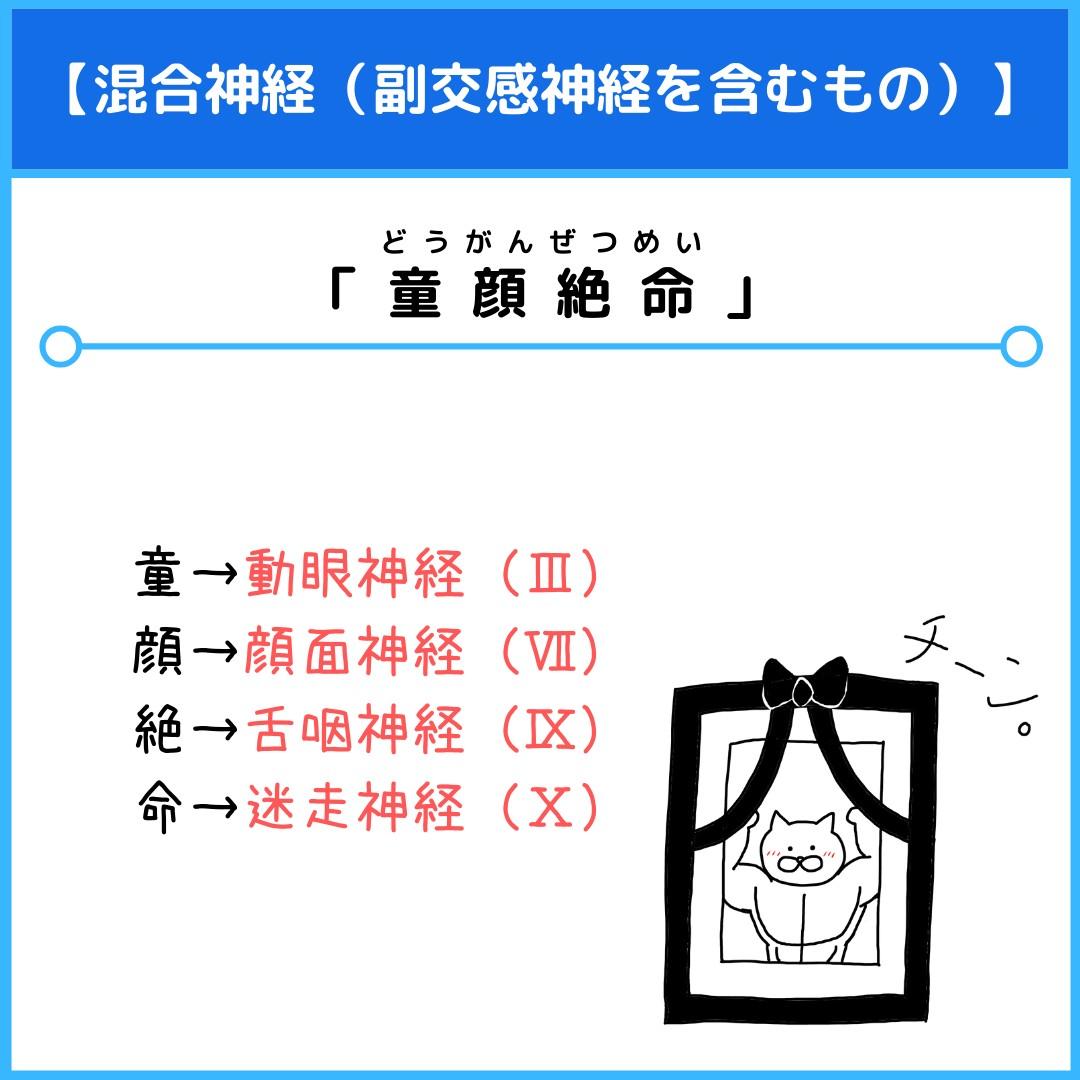 f:id:yakugakun:20210804164611j:plain