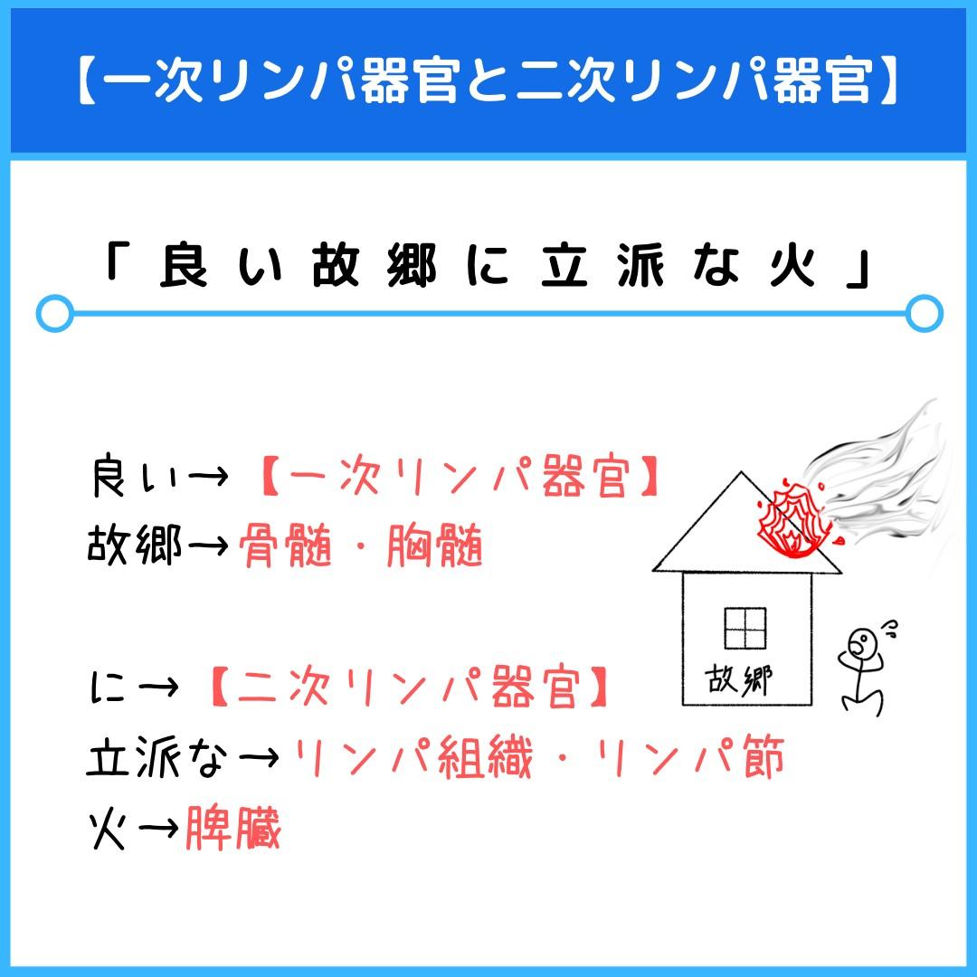 f:id:yakugakun:20210804172000j:plain