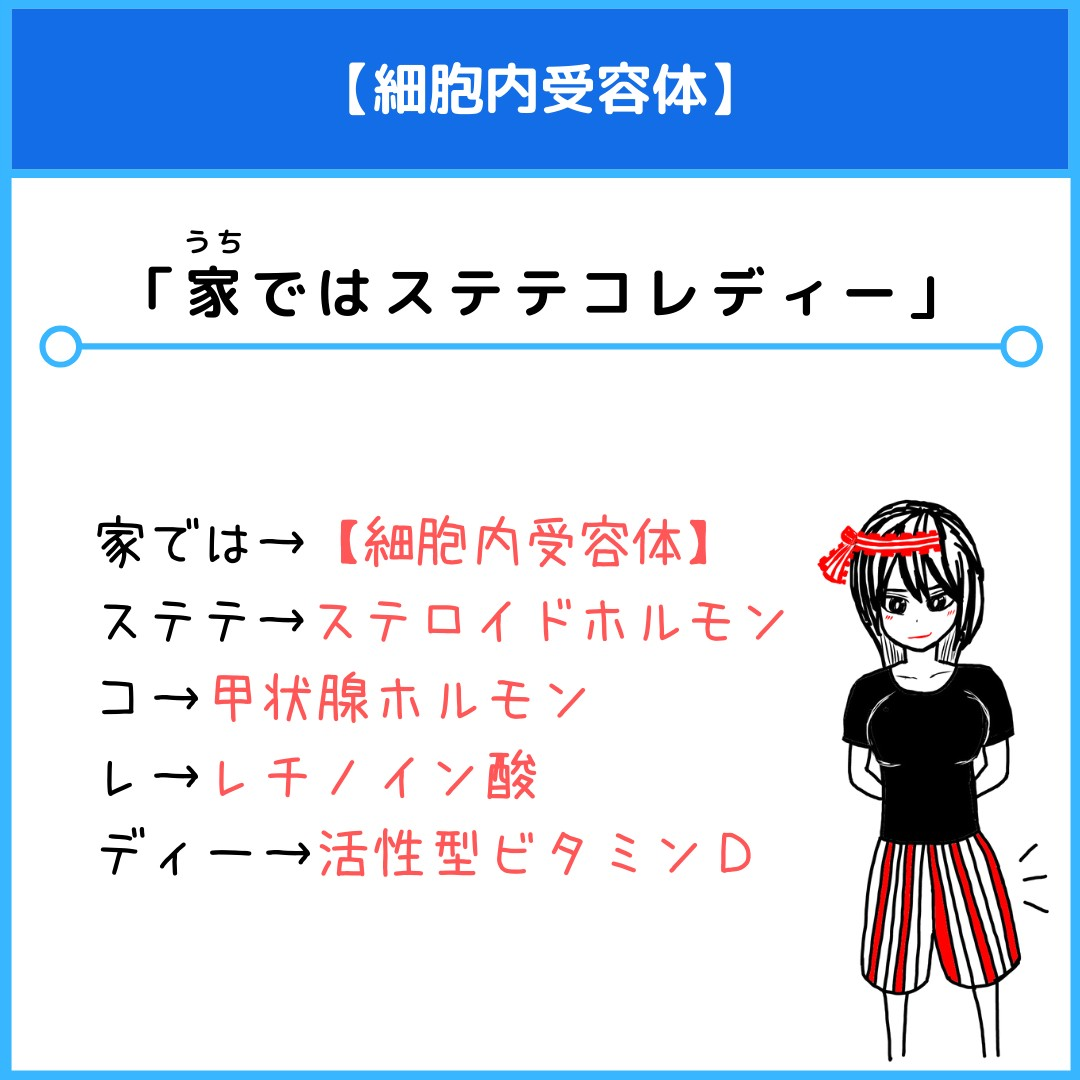 f:id:yakugakun:20210804173457j:plain