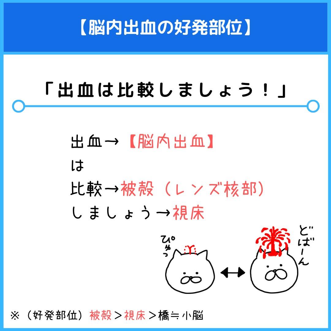 f:id:yakugakun:20210805111222j:plain