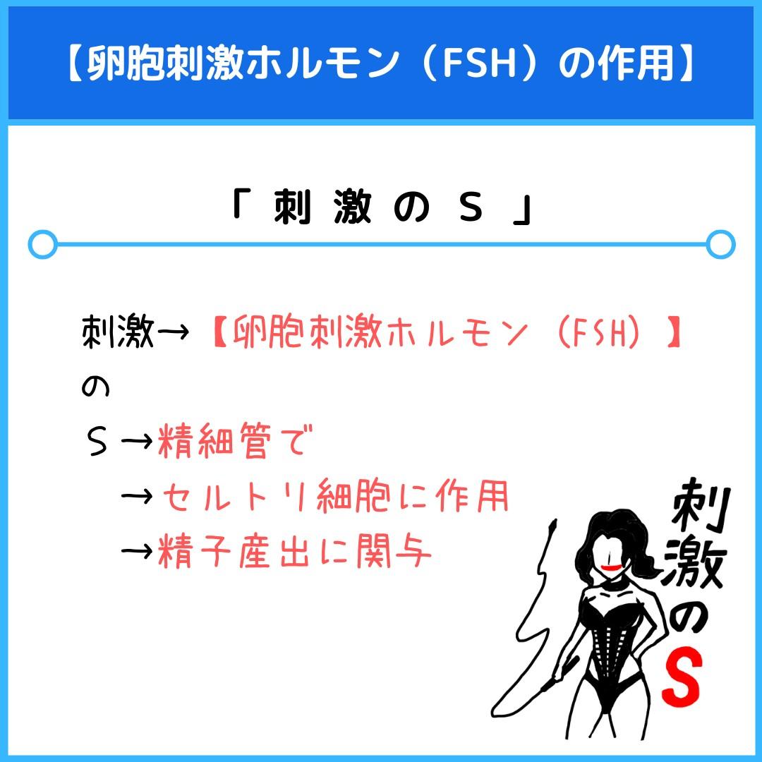 f:id:yakugakun:20210805113424j:plain