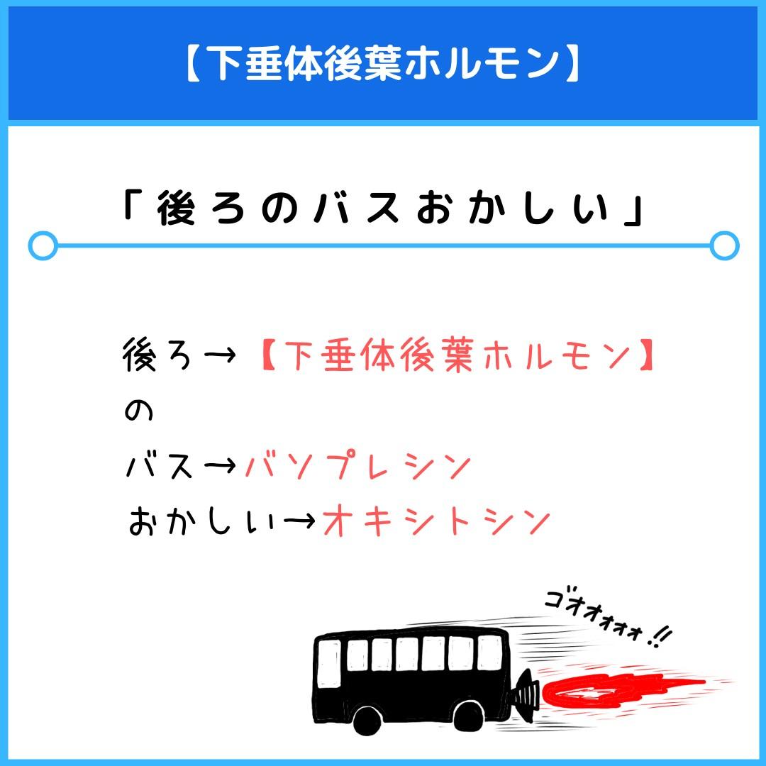 f:id:yakugakun:20210805133216j:plain