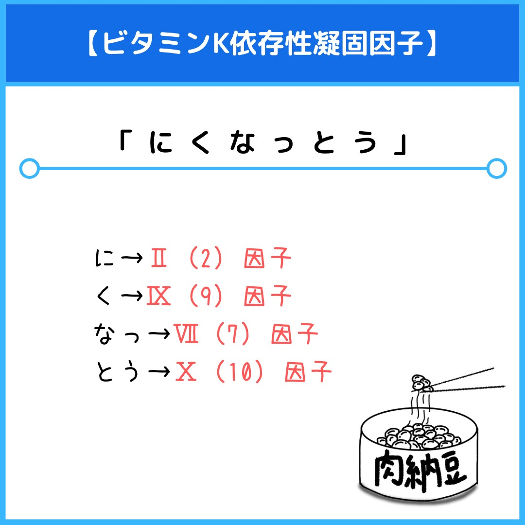 f:id:yakugakun:20210805135555j:plain