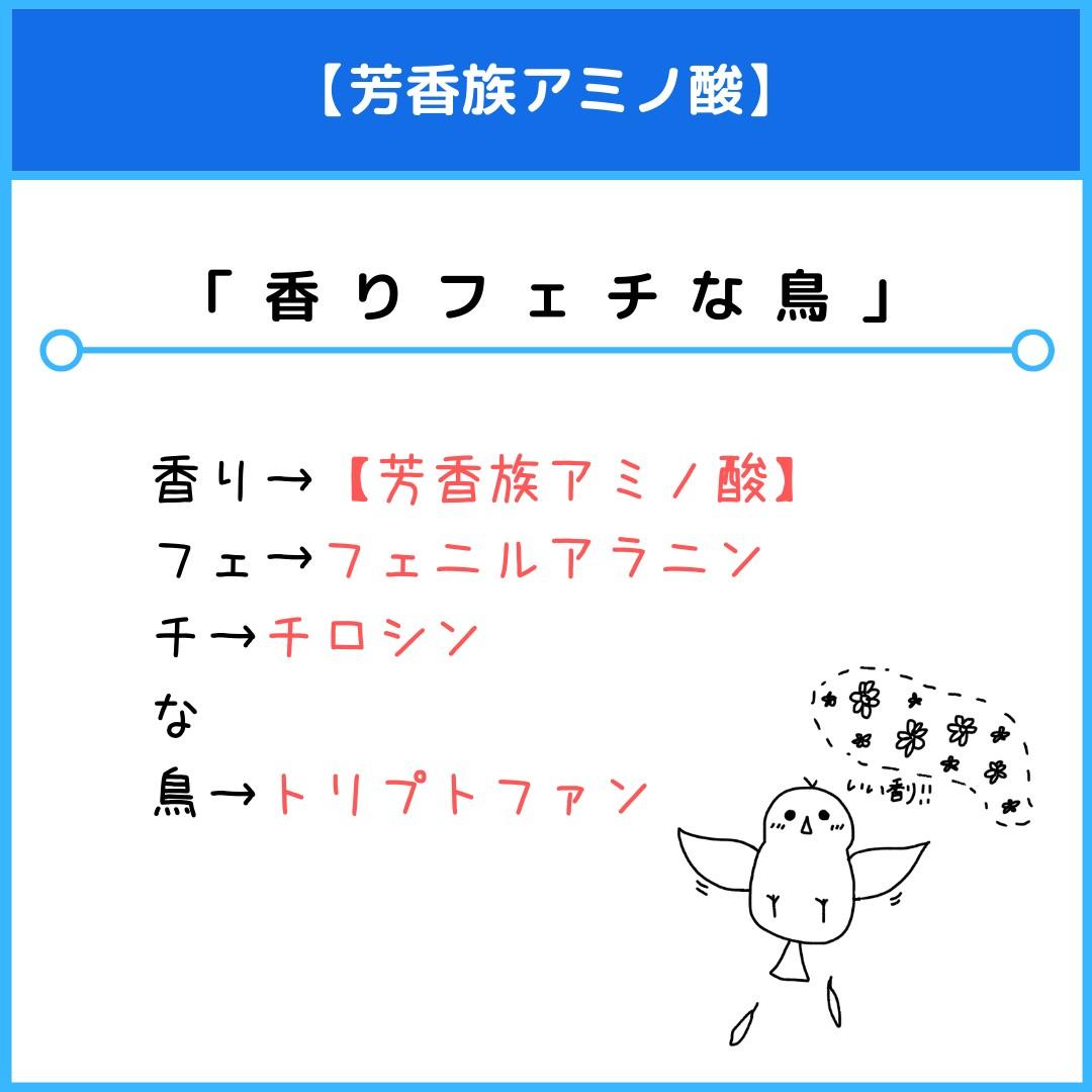 f:id:yakugakun:20210805141351j:plain