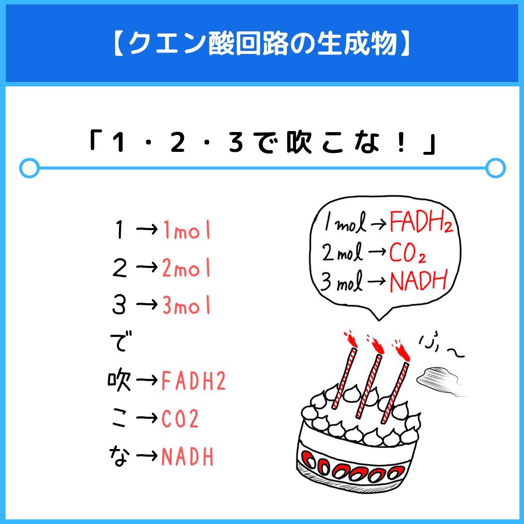 f:id:yakugakun:20210805145519j:plain