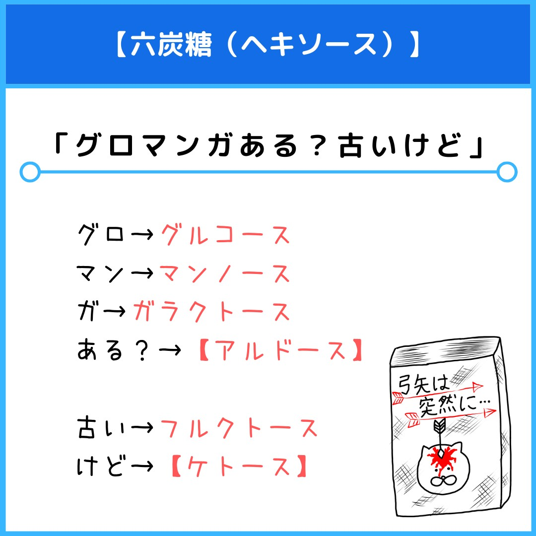 f:id:yakugakun:20210805163734j:plain