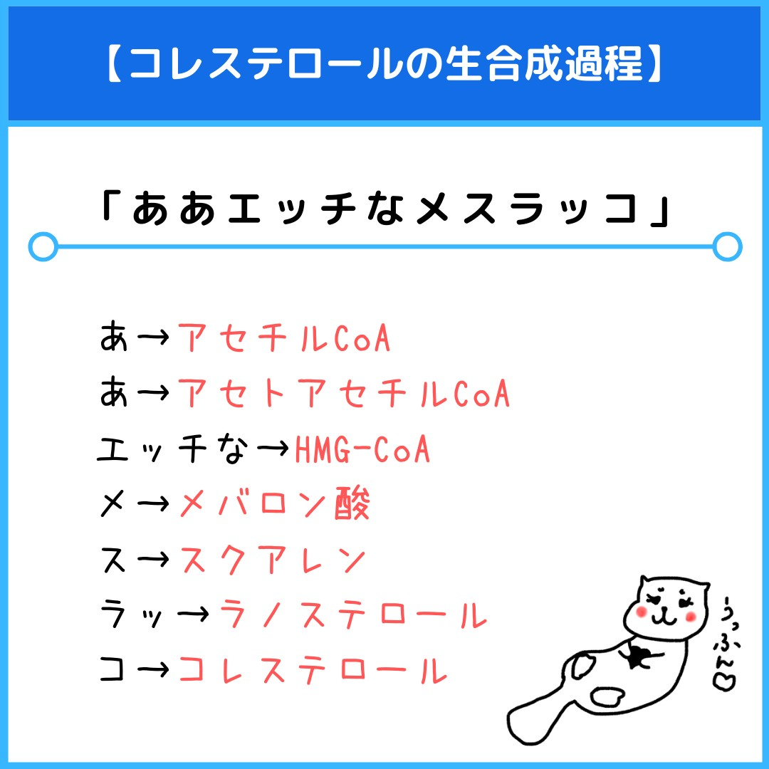 f:id:yakugakun:20210806110856j:plain