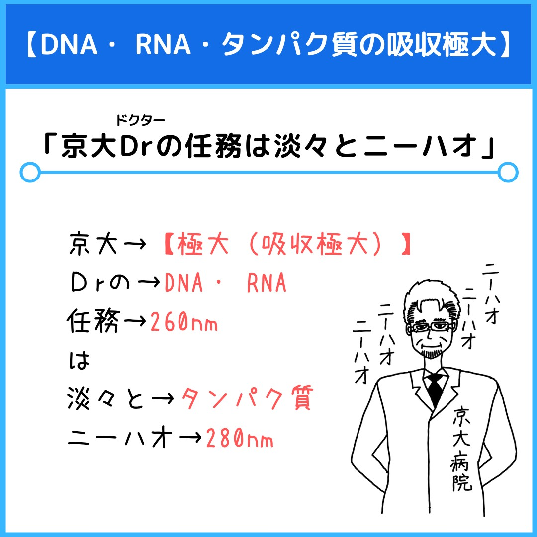 f:id:yakugakun:20210806111835j:plain