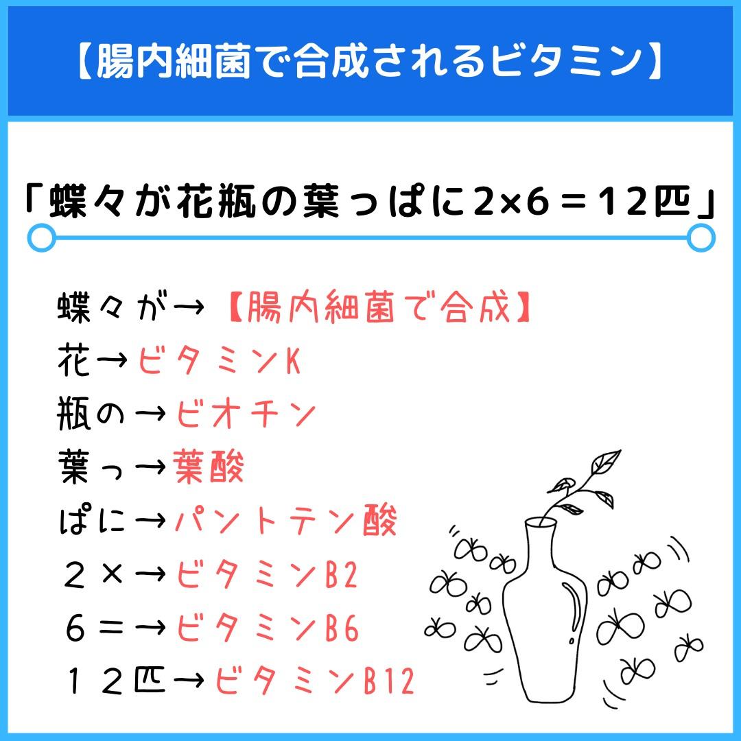 f:id:yakugakun:20210806113055j:plain