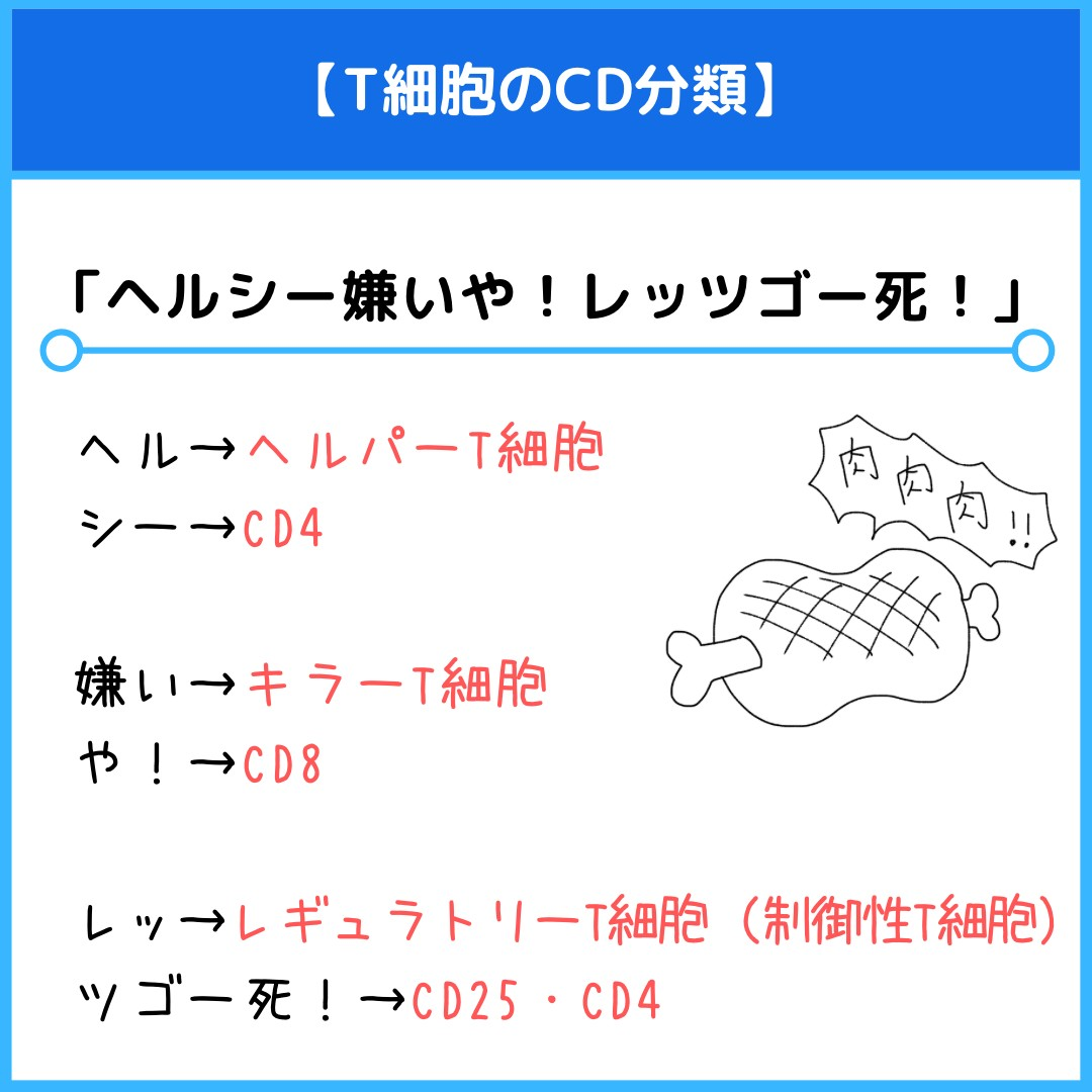 f:id:yakugakun:20210806133728j:plain