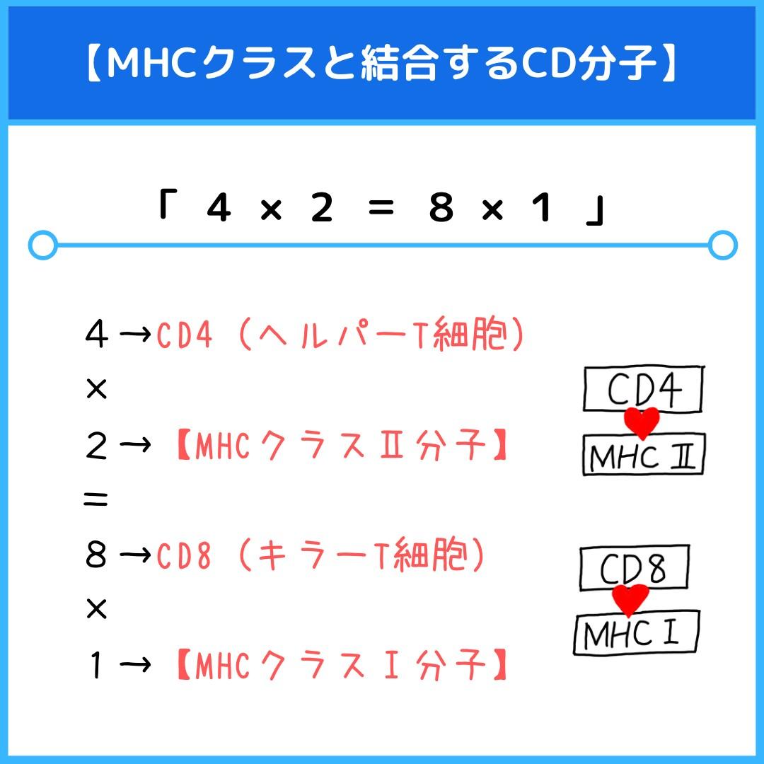 f:id:yakugakun:20210814124421j:plain