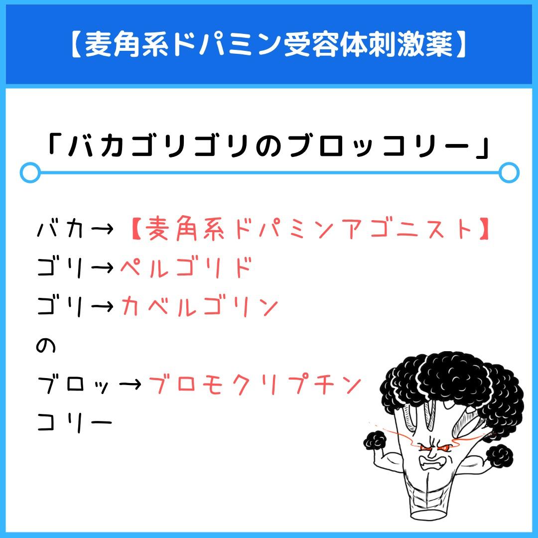 f:id:yakugakun:20210820113923j:plain