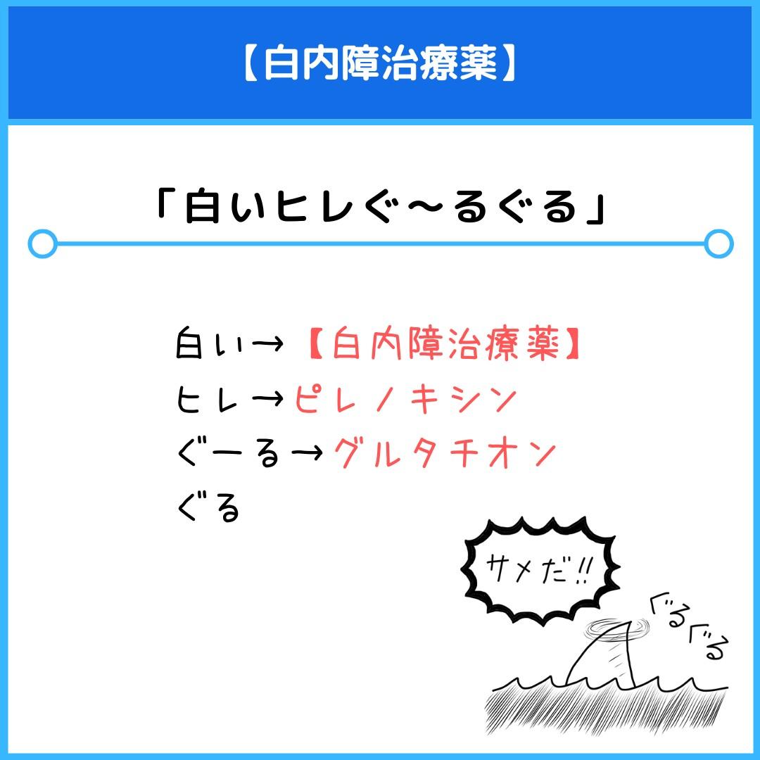 f:id:yakugakun:20210820195833j:plain