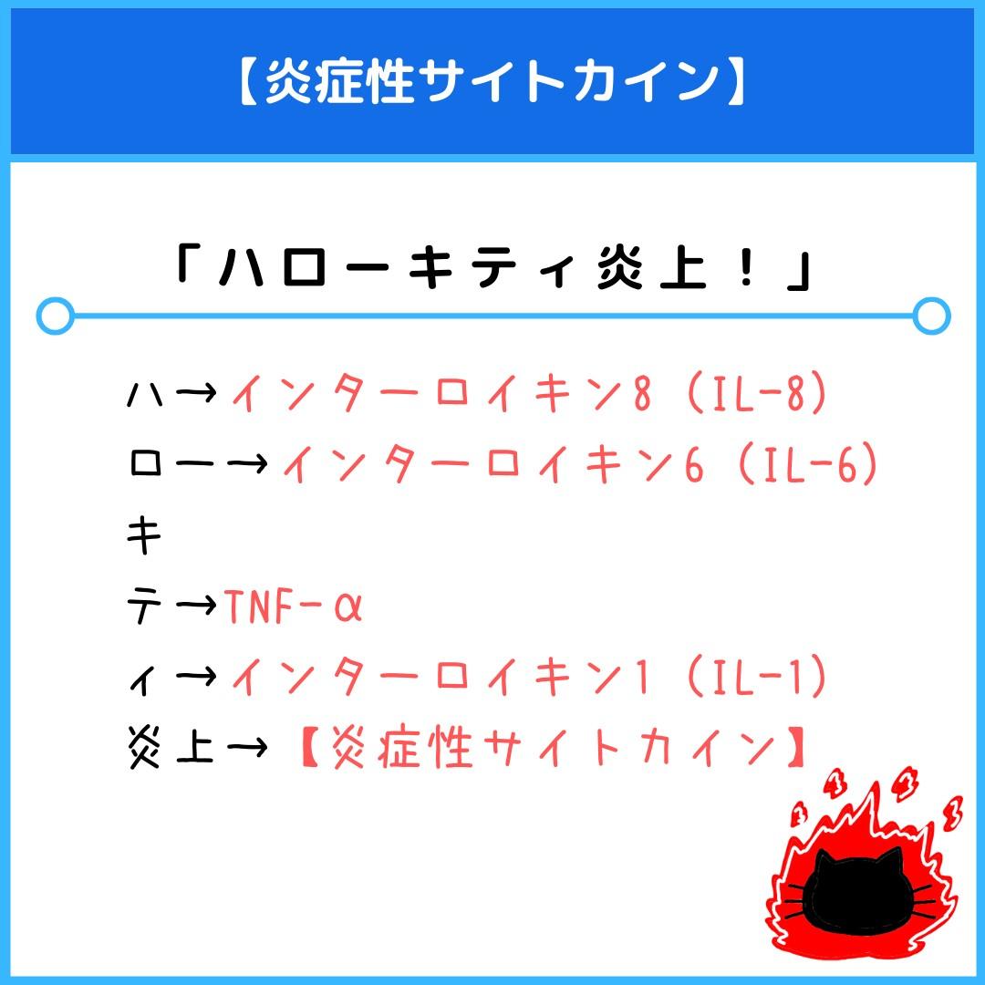 f:id:yakugakun:20210821073610j:plain