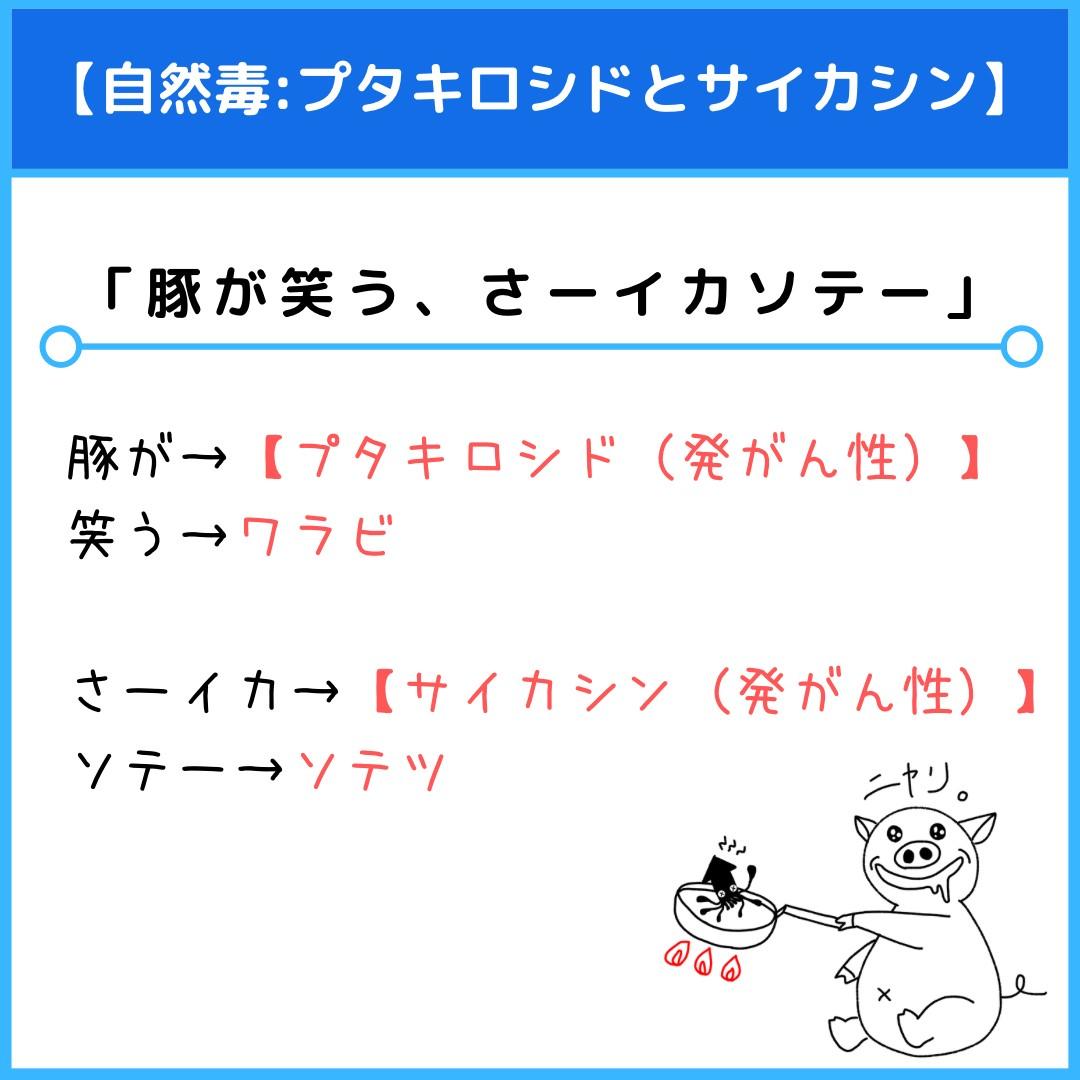 f:id:yakugakun:20210821080442j:plain