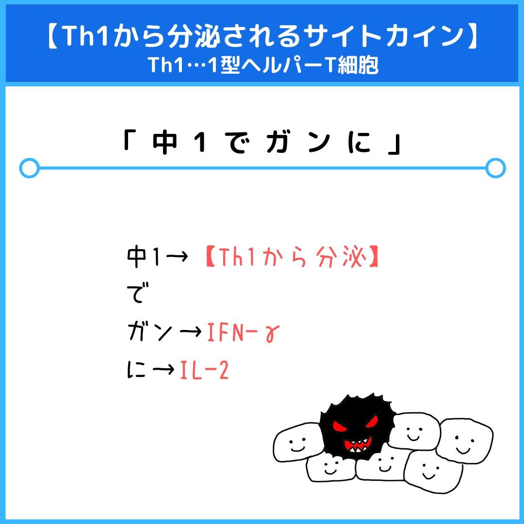 f:id:yakugakun:20210821080939j:plain