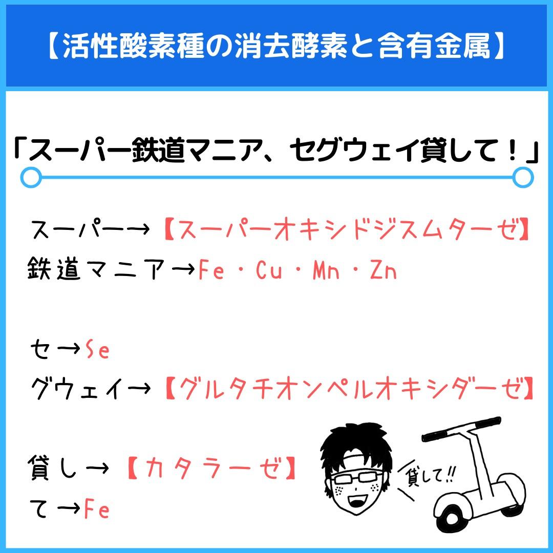 f:id:yakugakun:20210821093219j:plain