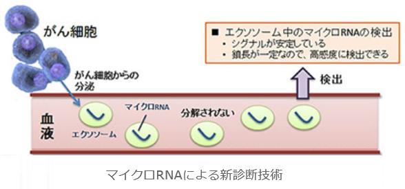 f:id:yakujiman:20160720173617j:plain