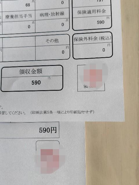 f:id:yakumioishii:20210608175827j:image