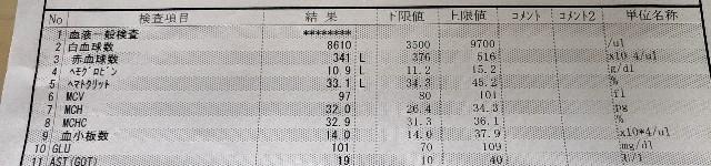 f:id:yakumioishii:20210616163929j:image