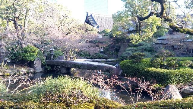 f:id:yakumioishii:20210626082111j:image