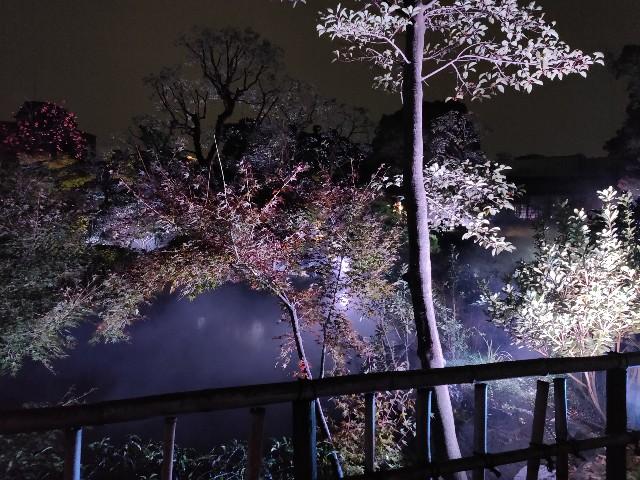 f:id:yakumioishii:20210626083443j:image