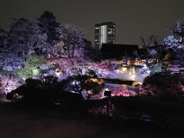 f:id:yakumioishii:20210626083501j:image