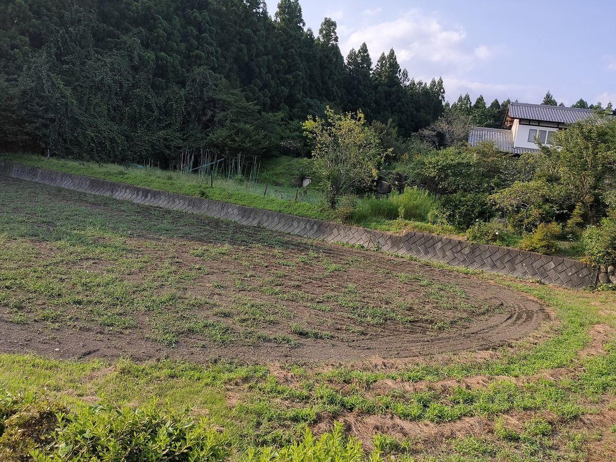 f:id:yakumo307:20200905043102j:plain