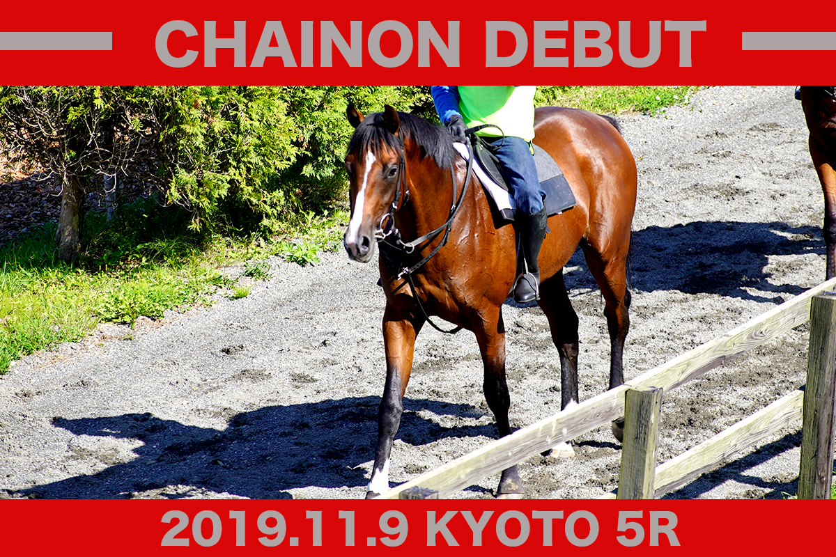 f:id:yakumo_banu:20191107192230j:plain
