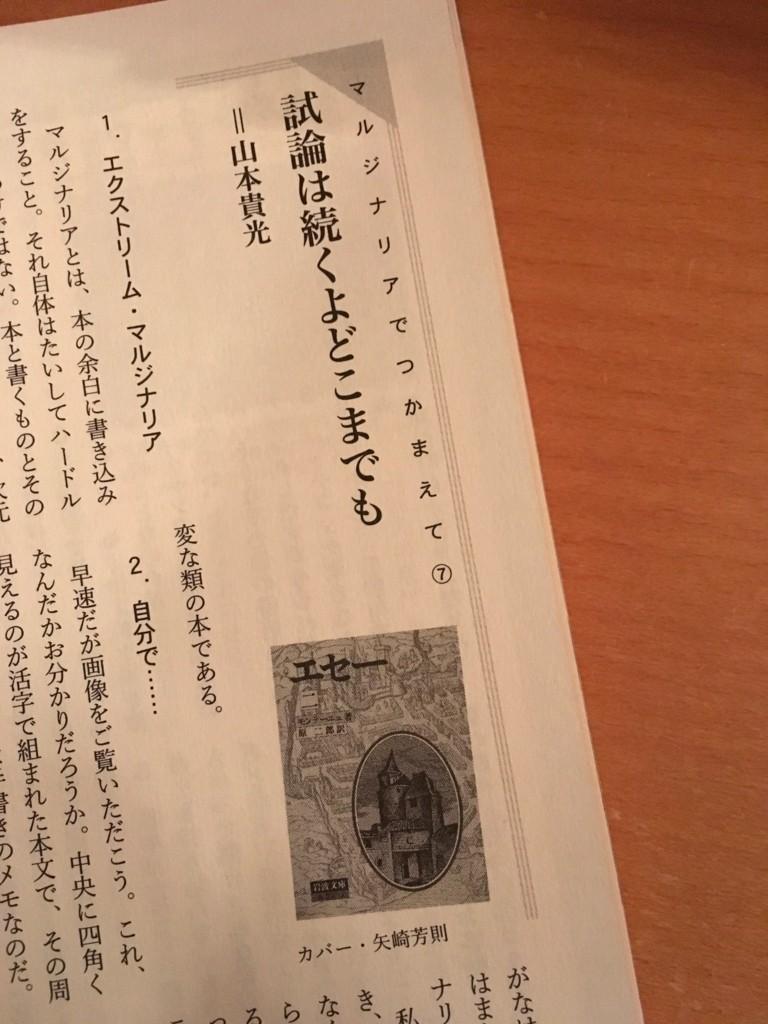 f:id:yakumoizuru:20180312224658j:plain