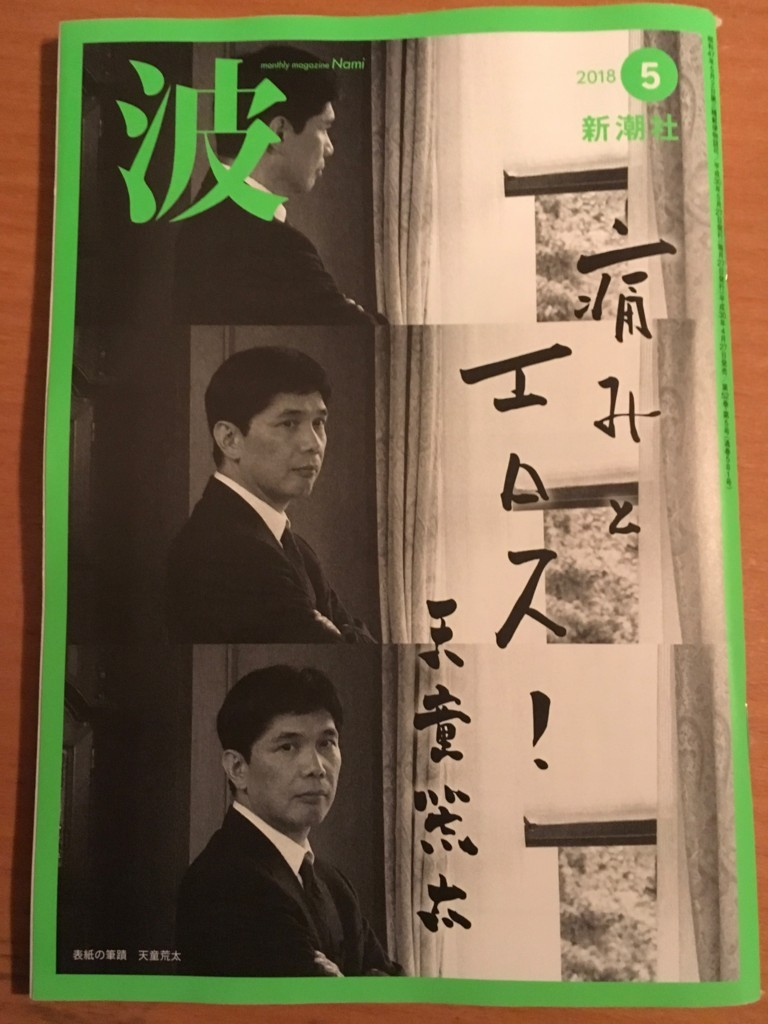 f:id:yakumoizuru:20180426222545j:plain