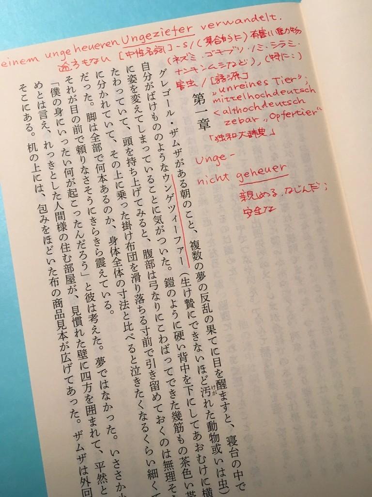 f:id:yakumoizuru:20181206213816j:plain