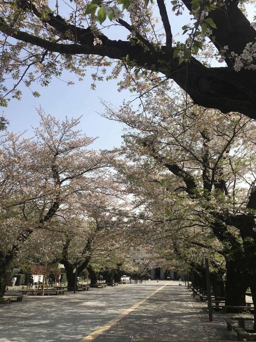 f:id:yakumoizuru:20210401143819j:plain
