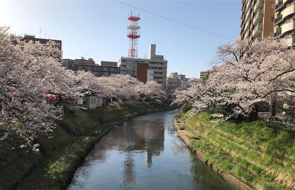 f:id:yakushi252:20180330171654j:image