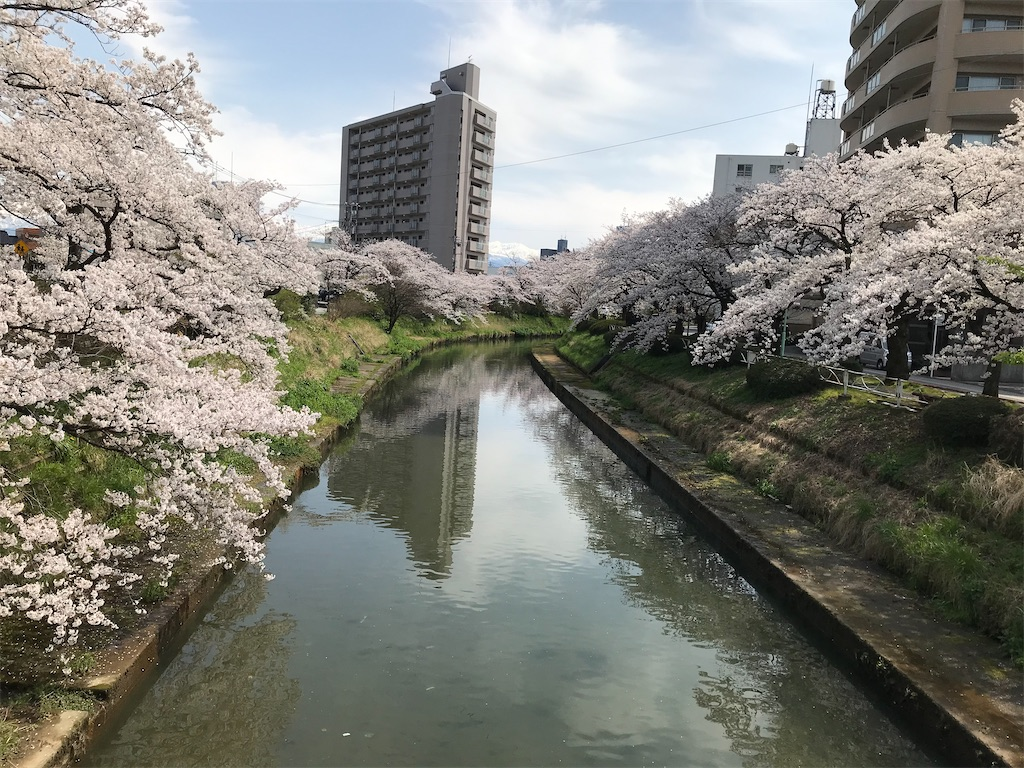 f:id:yakushi252:20200403124329j:image