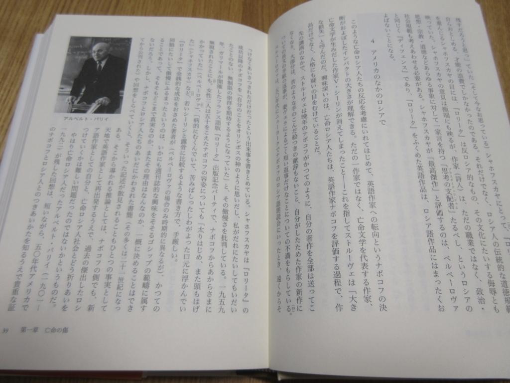f:id:yakusunohawatashi:20180530221322j:plain