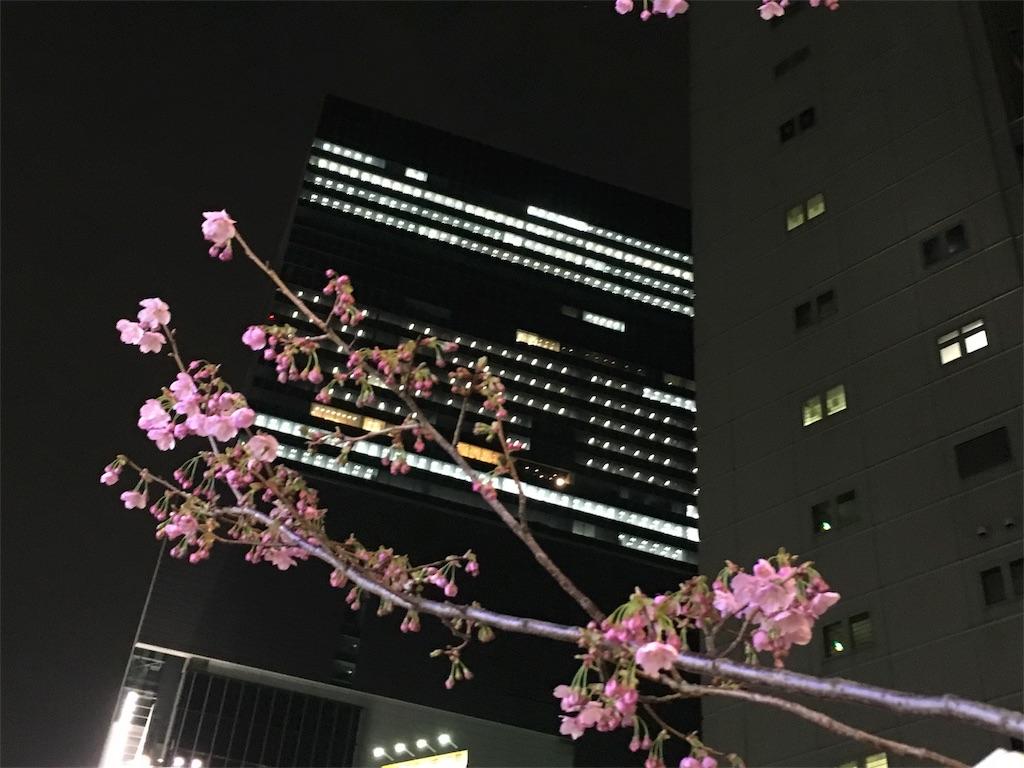 f:id:yakuwari:20170331081256j:image
